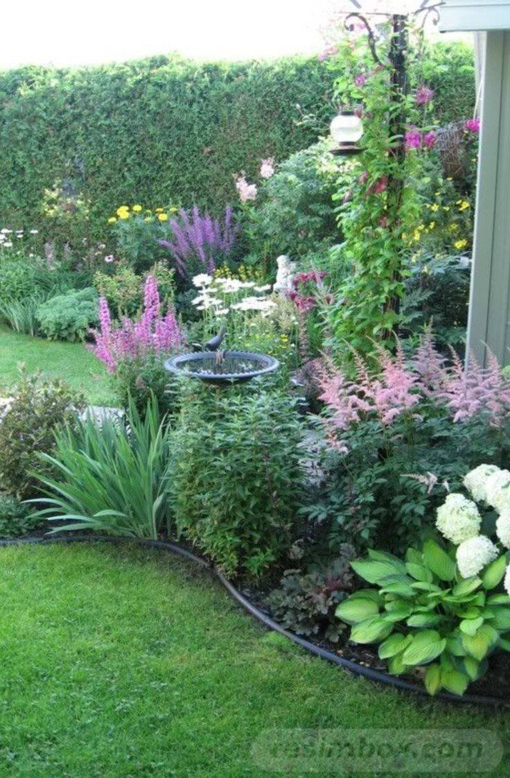 tropical garden ideas-663295851349495696