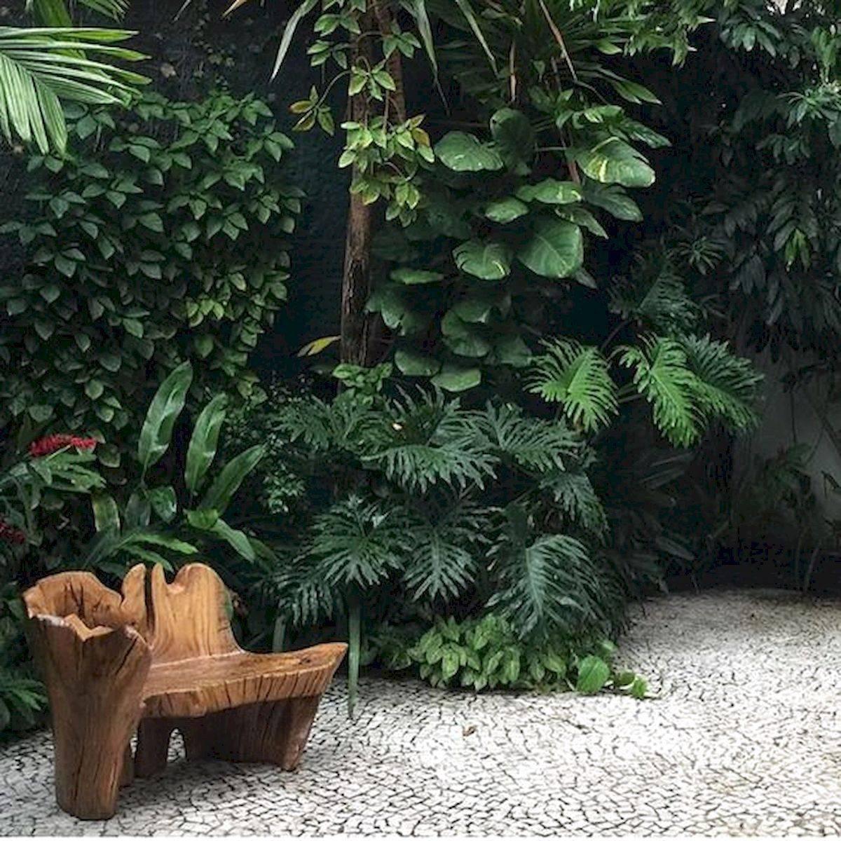 tropical garden ideas-588423507545035237