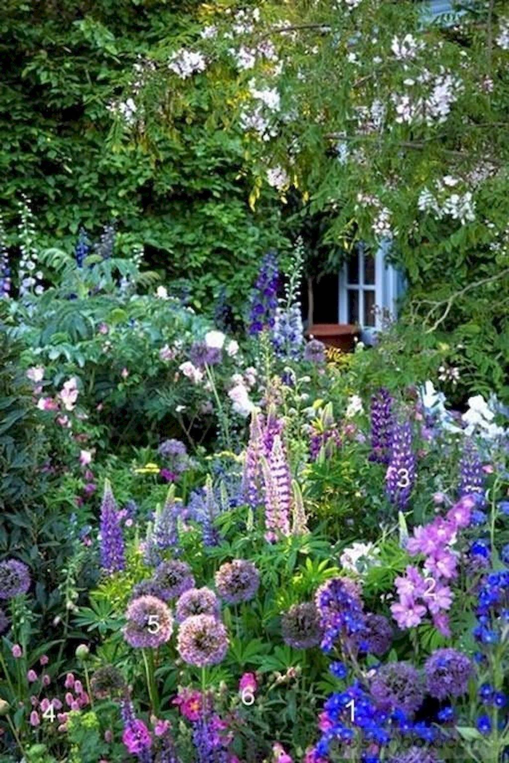 tropical garden ideas-679762137487271106