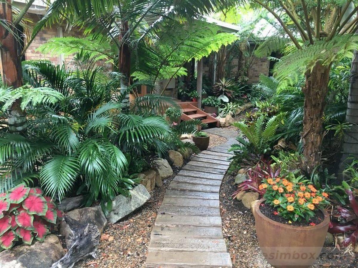tropical garden ideas-812759063980435826