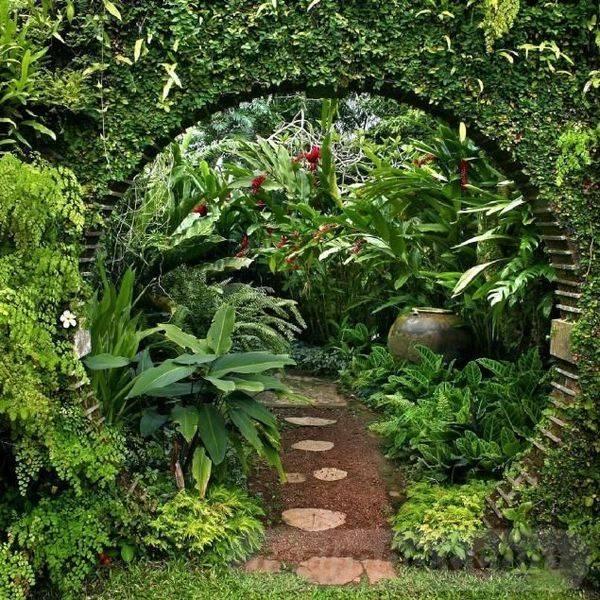 tropical garden ideas-663084745116740857