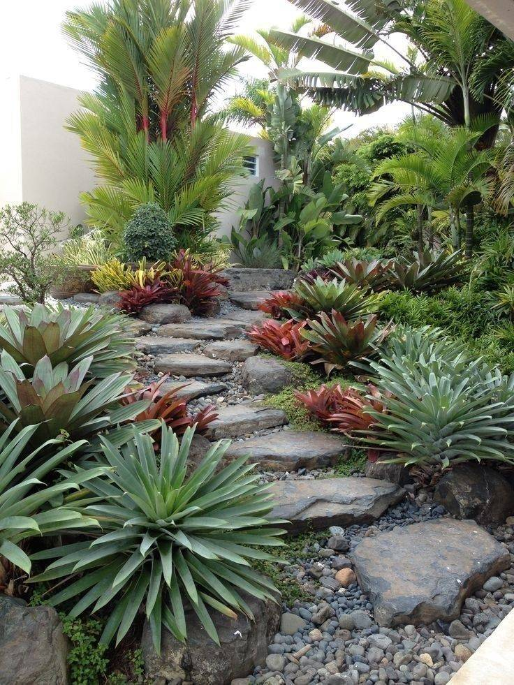tropical garden ideas-713257659716494433