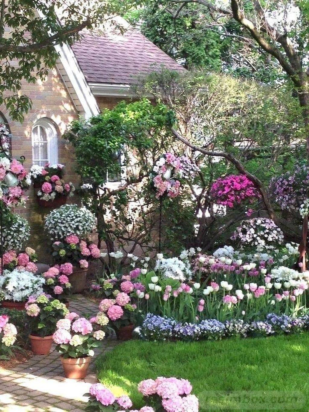 tropical garden ideas-742531057293392486