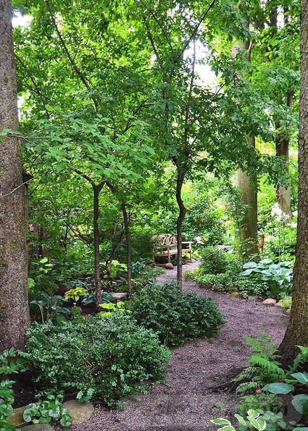 tropical garden ideas-320107486015539879
