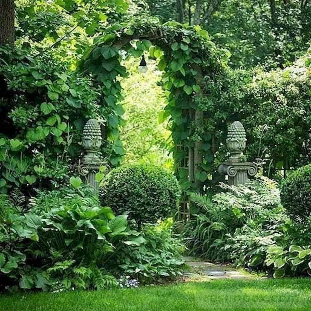 tropical garden ideas-498703358736314054