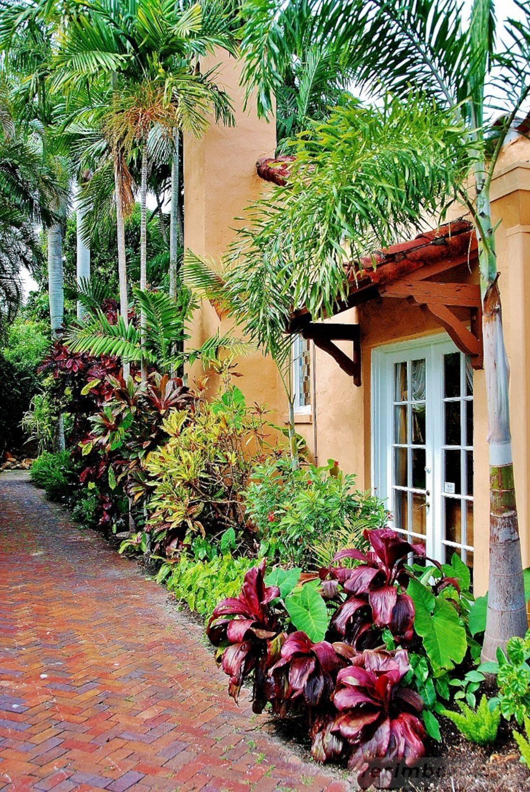 tropical garden ideas-149744756347497932