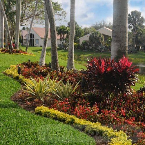 tropical garden ideas-344103227778993021