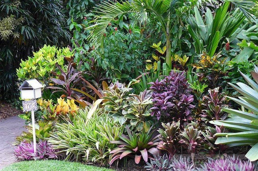 tropical garden ideas-378654281169388595