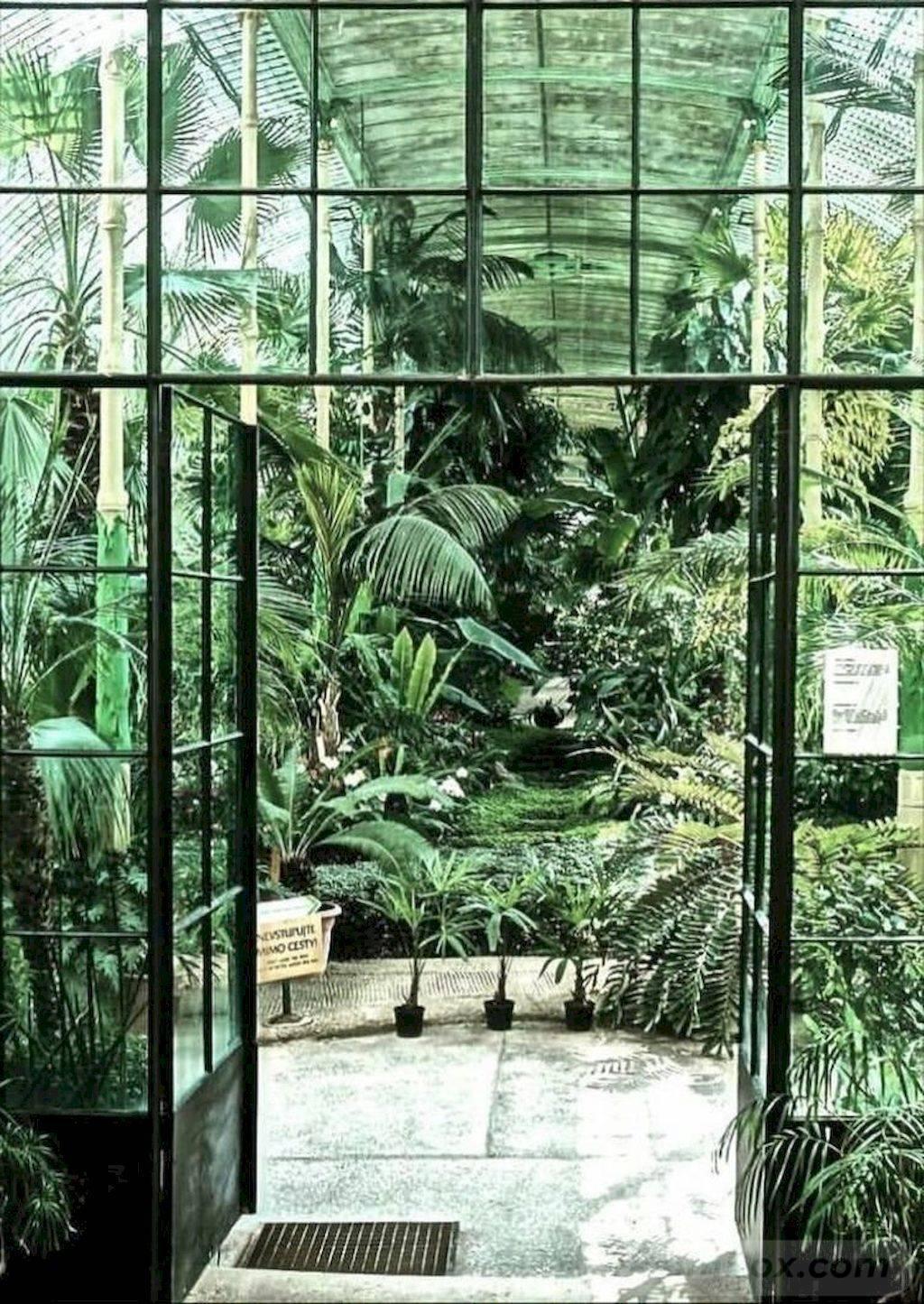 tropical garden ideas-776167317010988716