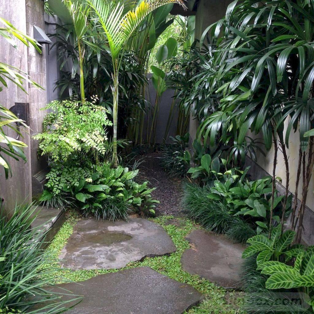 tropical garden ideas-26951297757330563