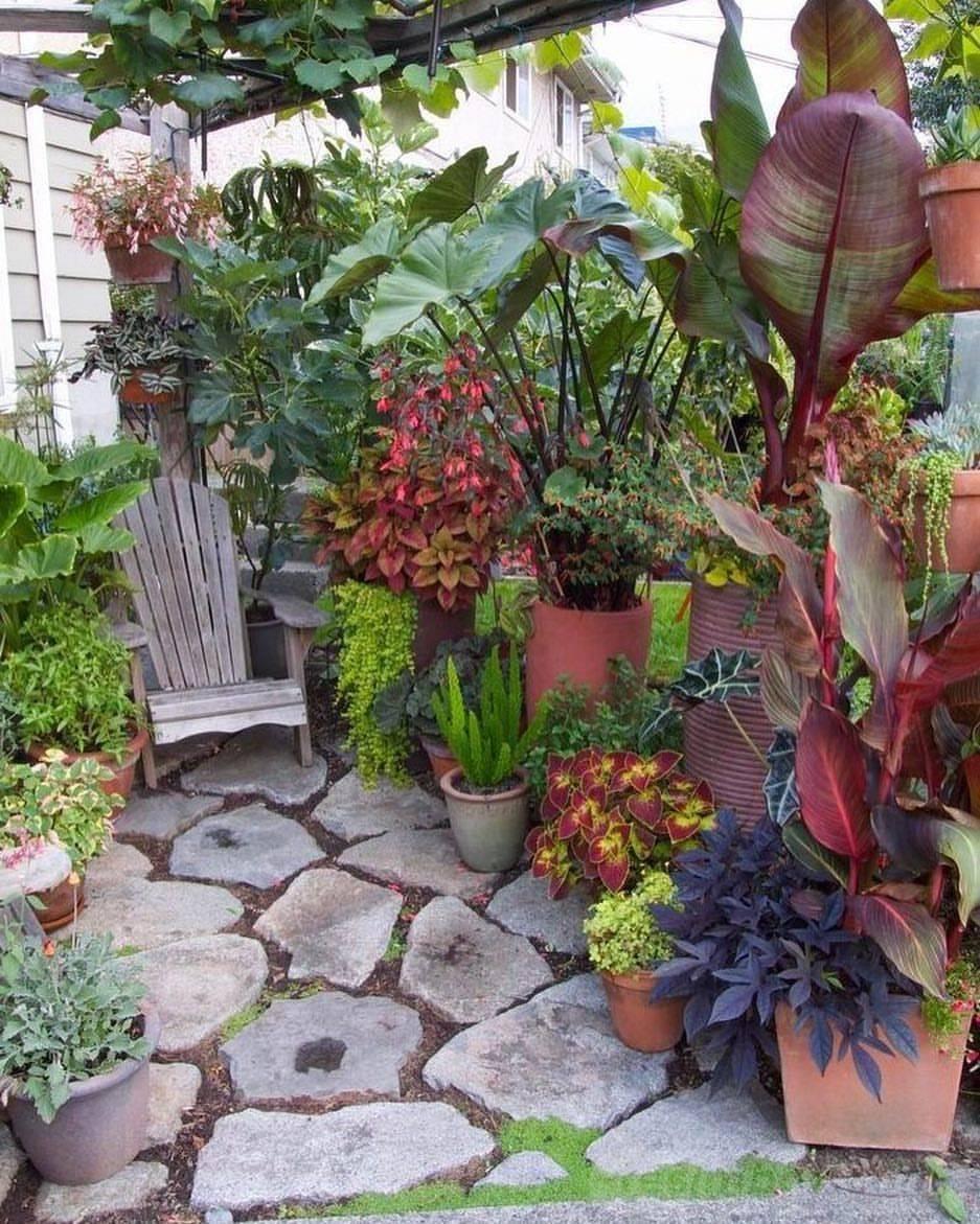 tropical garden ideas-764837949197901092