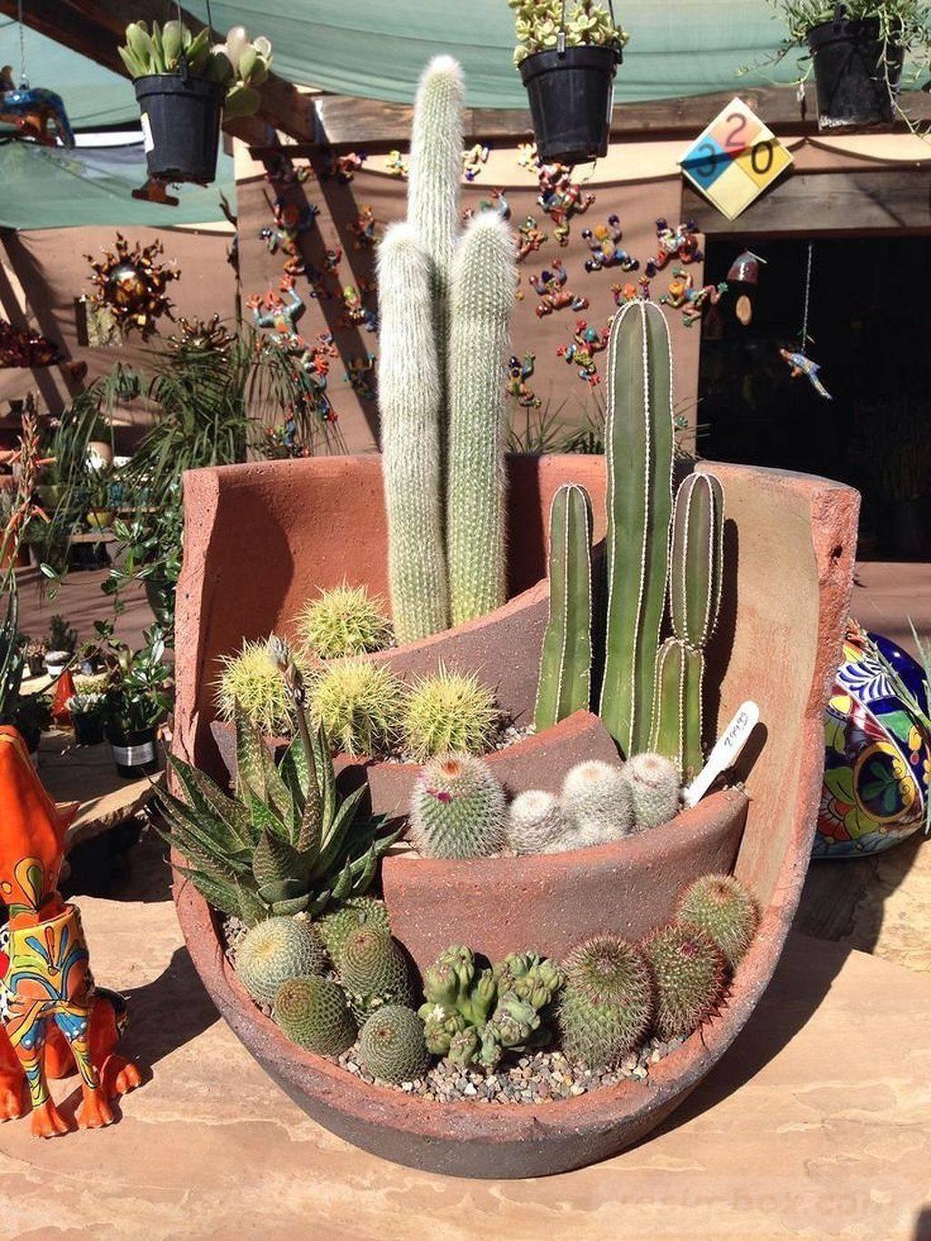 tropical garden ideas-656047870698720435