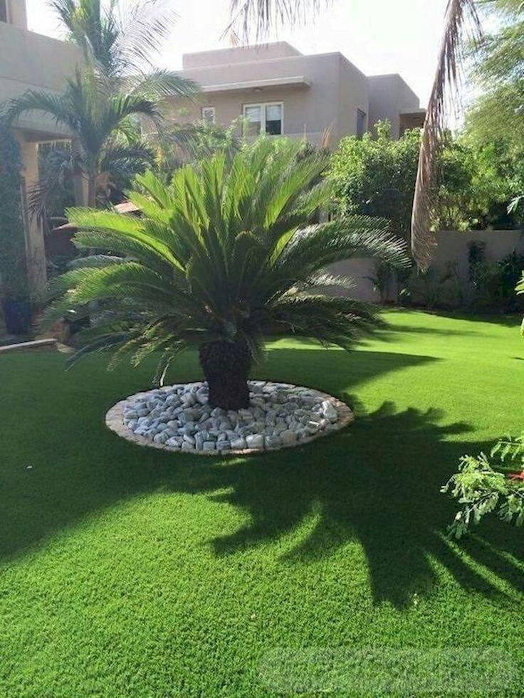 tropical garden ideas-734931232922196729