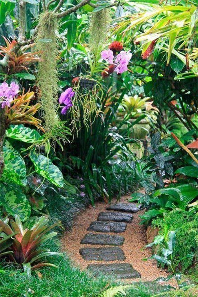 tropical garden ideas-722827808924193300