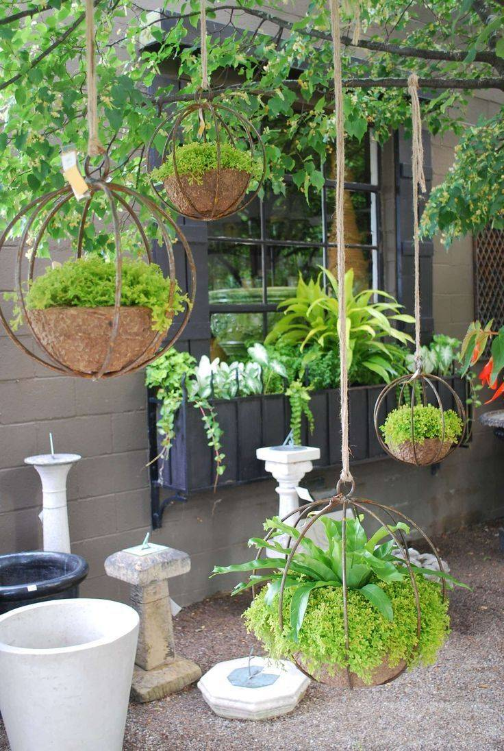 tropical garden ideas-736831189012026274