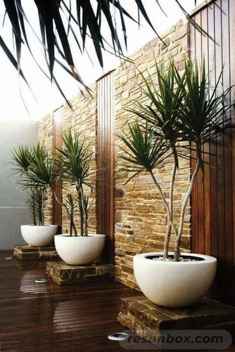 tropical garden ideas-357121445451052349