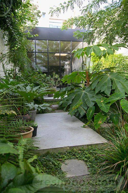 tropical garden ideas-603623156284430460
