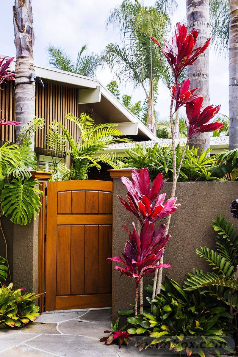 tropical garden ideas-13510867617544937