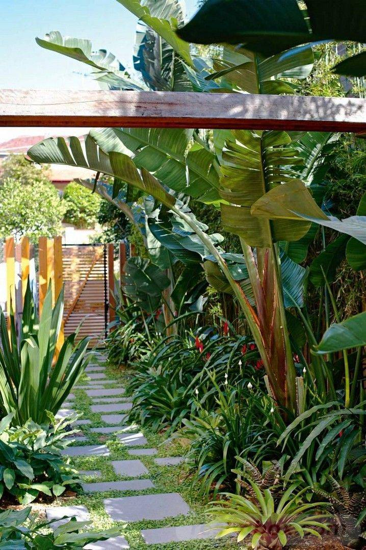 tropical garden ideas-812759063980452729
