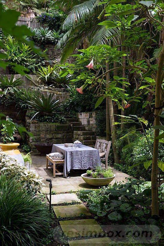 tropical garden ideas-629941066609379874