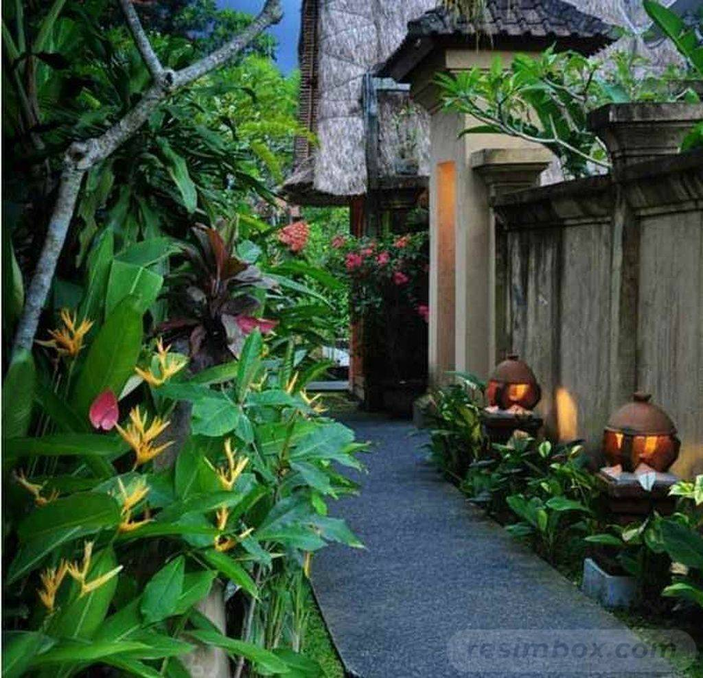tropical garden ideas-647673990141154311