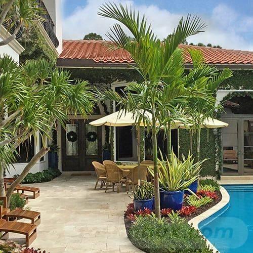 tropical garden ideas-455919162277286746
