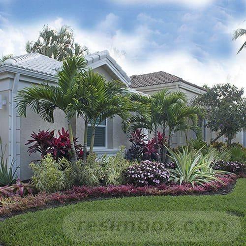 tropical garden ideas-447967494185717789