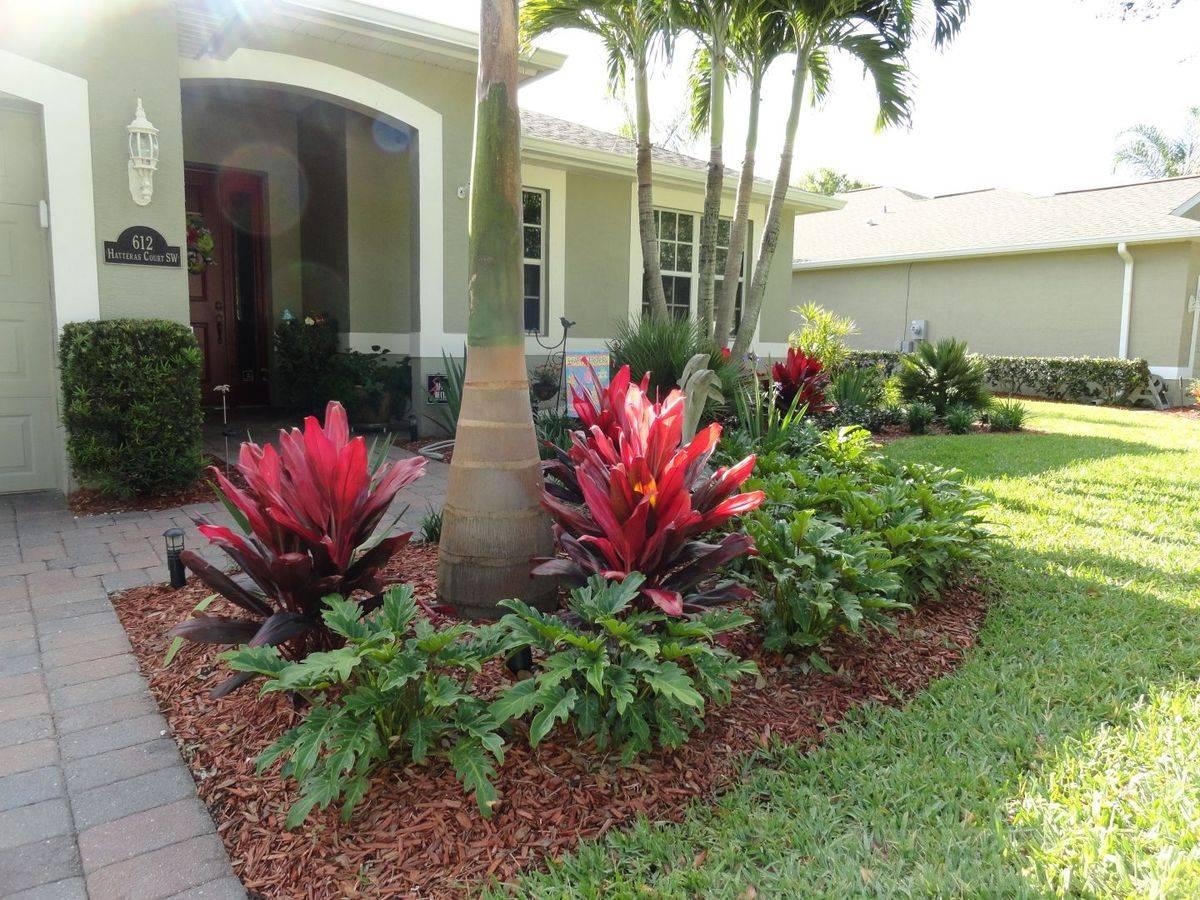 tropical garden ideas-559853797426474619