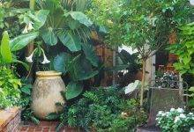 15 Most Beautiful Tropical Style Garden Design İdeas İnspiration Pictures