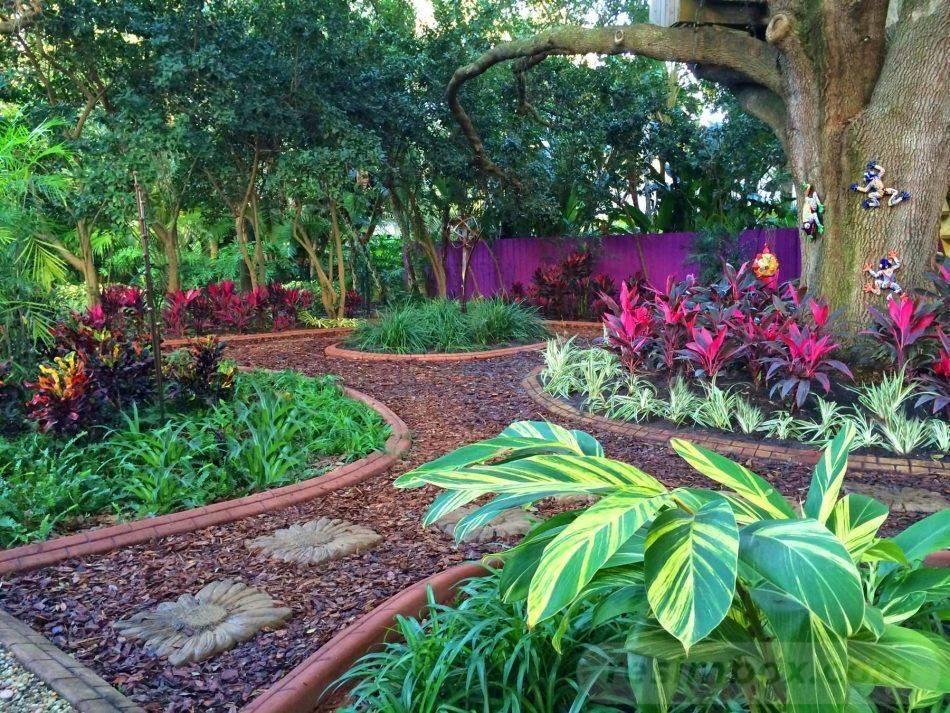 tropical garden ideas-368169338287406691