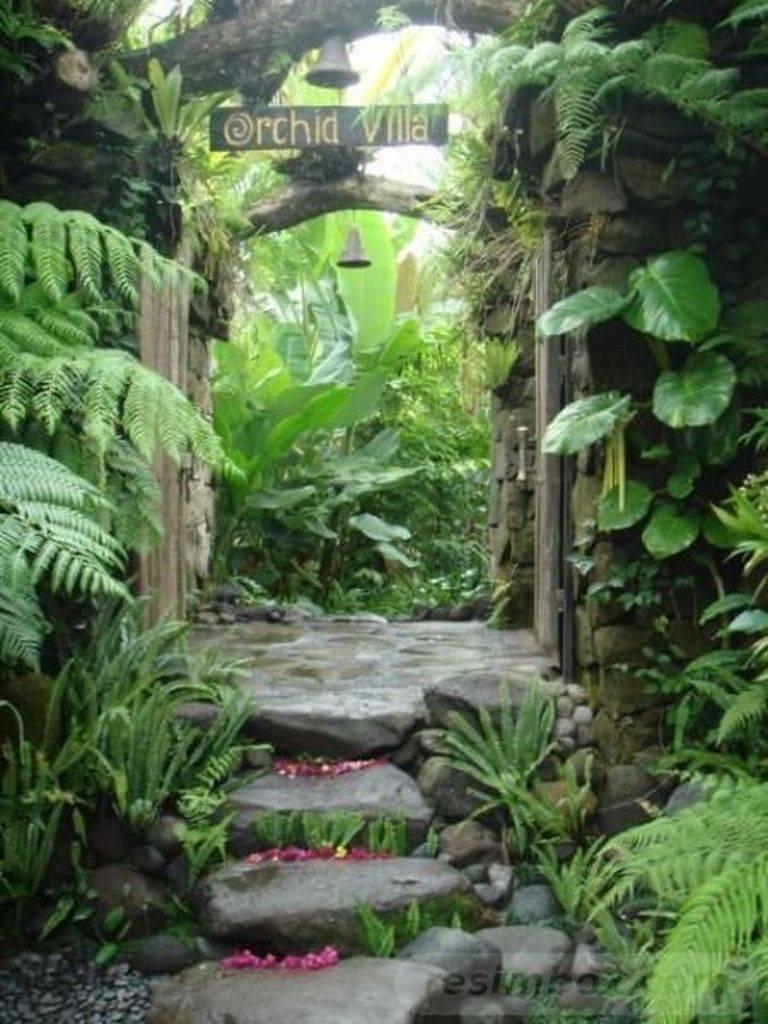 tropical garden ideas-508554982921341938