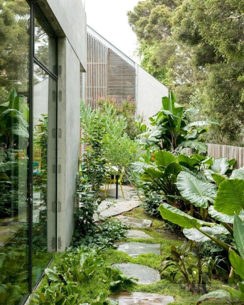 tropical garden ideas-733664595525739124