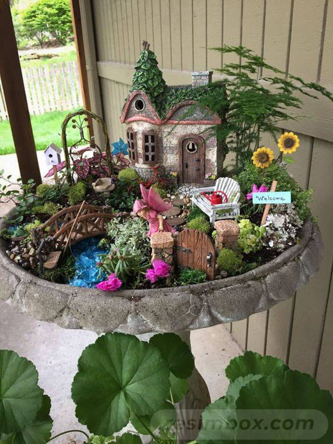 tropical garden ideas-634726141213911886