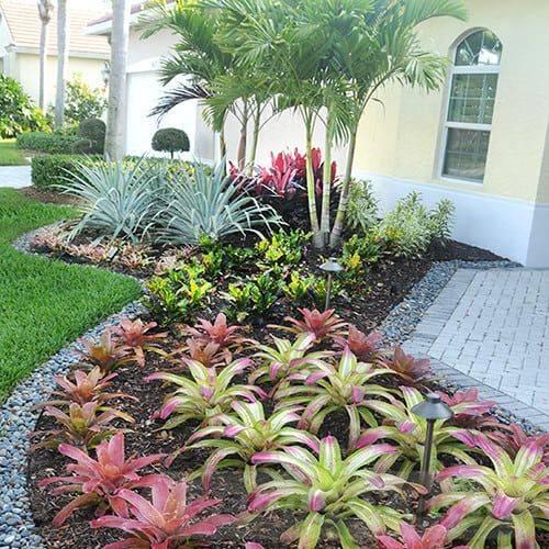 tropical garden ideas-658088564278818637
