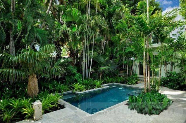 tropical garden ideas-608830443357628863