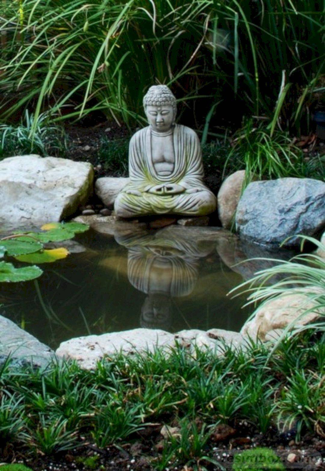 tropical garden ideas-783837510123790791