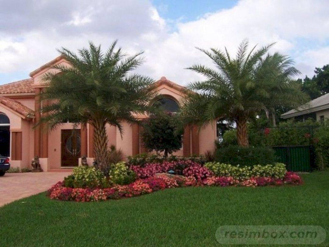 tropical garden ideas-411797959676132810