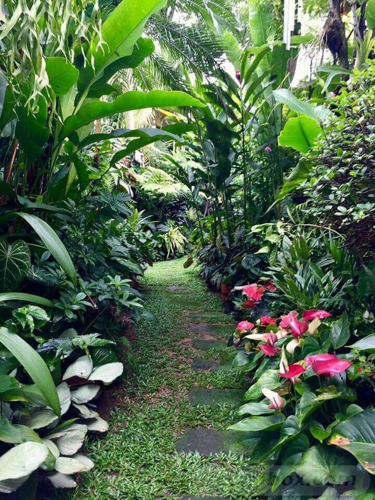 tropical garden ideas-222294931592791697