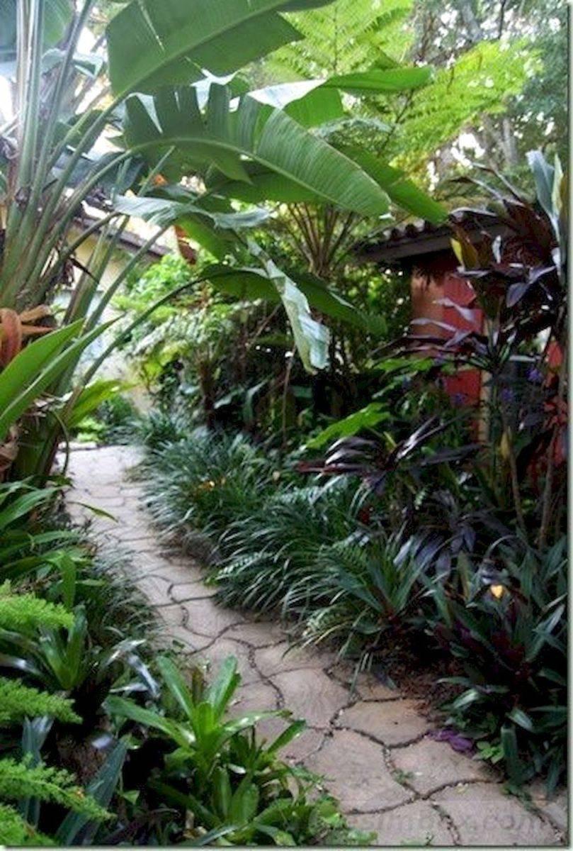 tropical garden ideas-588423507545035234