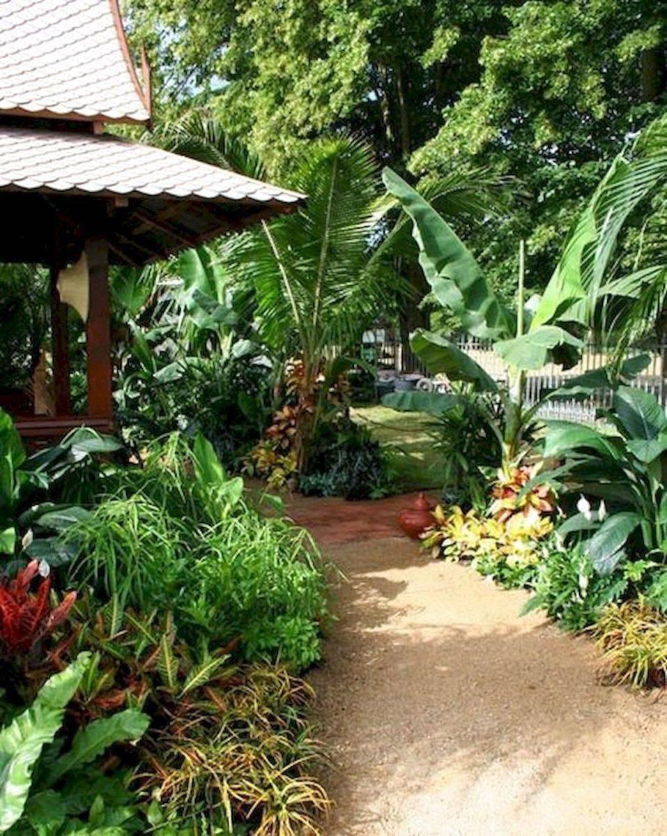 tropical garden ideas-706502260275295635