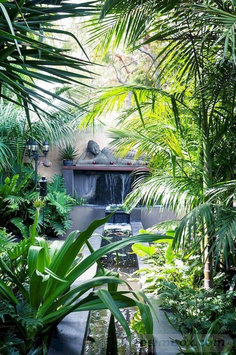 tropical garden ideas-742460688550096046
