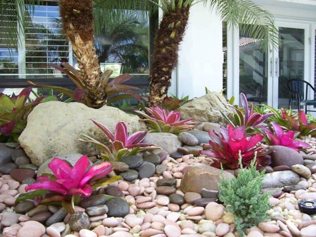 tropical garden ideas-411797959676128734