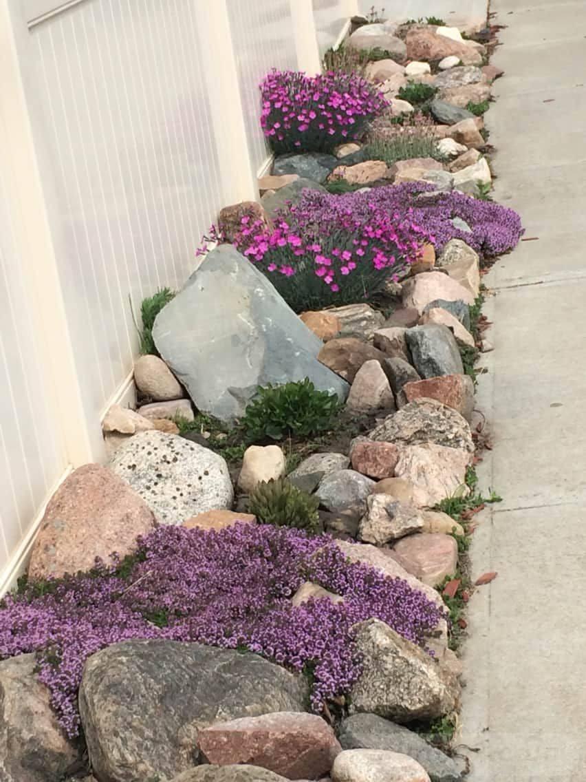 creative garden ideas-582371795544144081