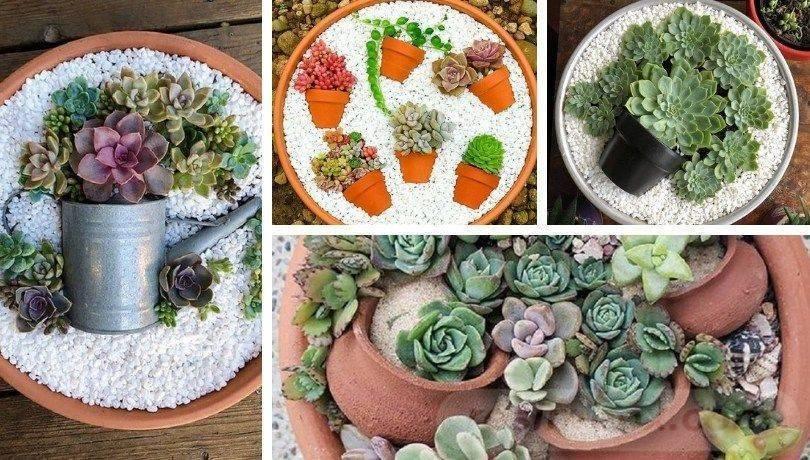 garden pot design-552535448032395311