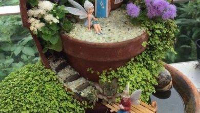 17 Most Beautiful Broken Pots Turned Into Brilliant Dıy Fairy Gardens