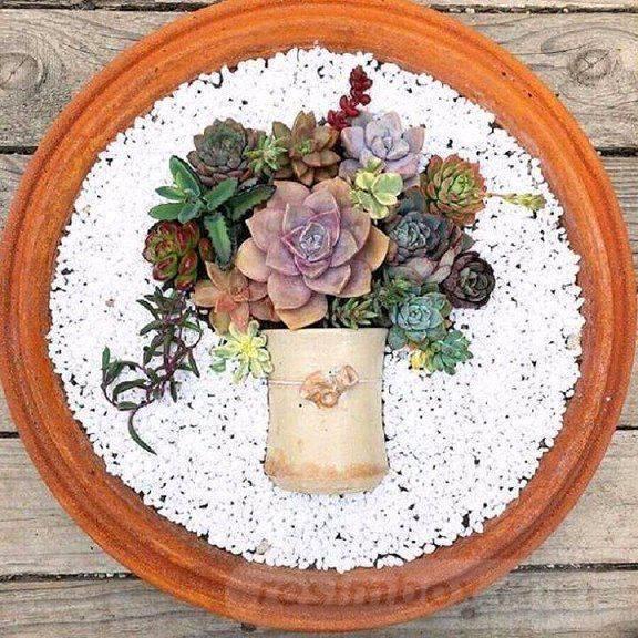 garden pot design-151503974954468319
