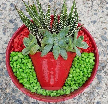 garden pot design-122512052349052243