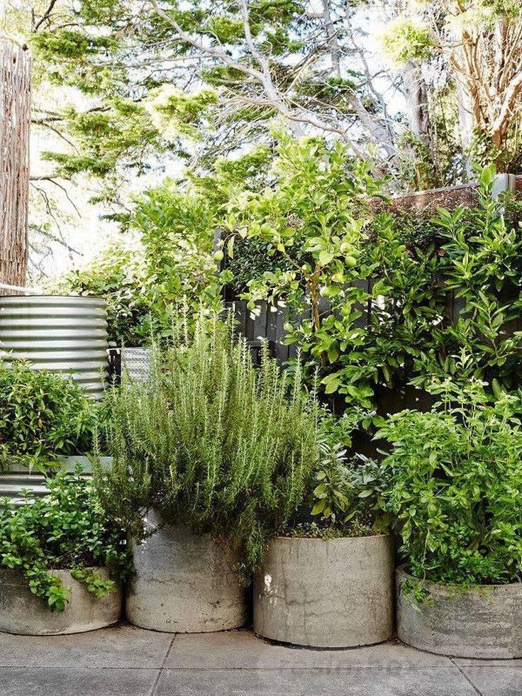 garden pot design-530932243569824900