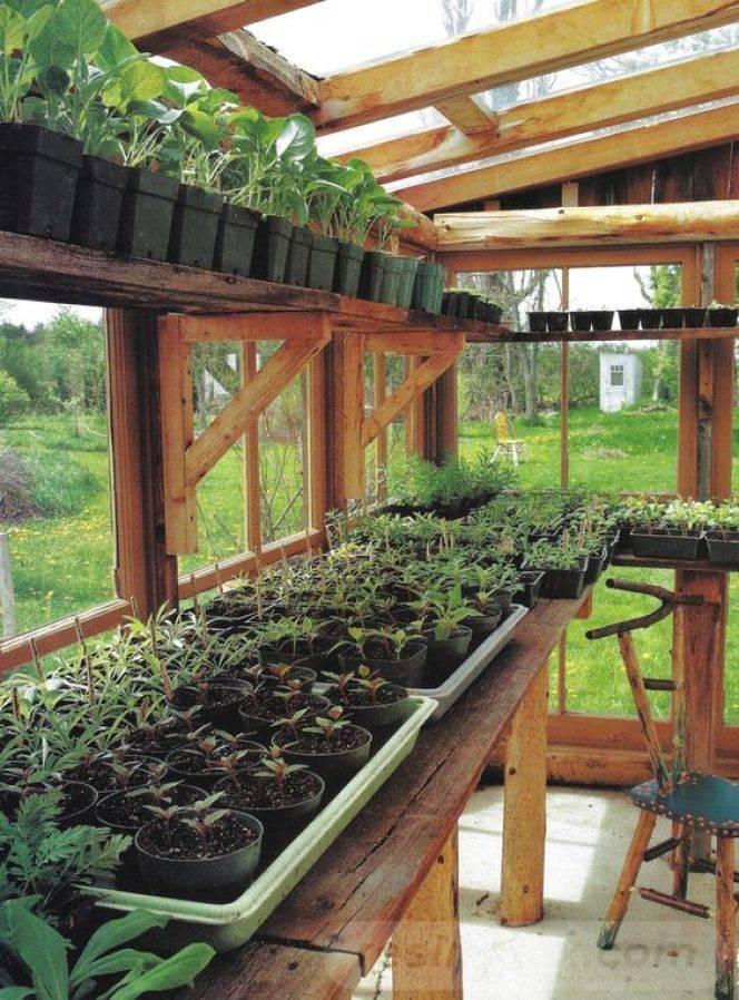 garden pot design-60306082497604879