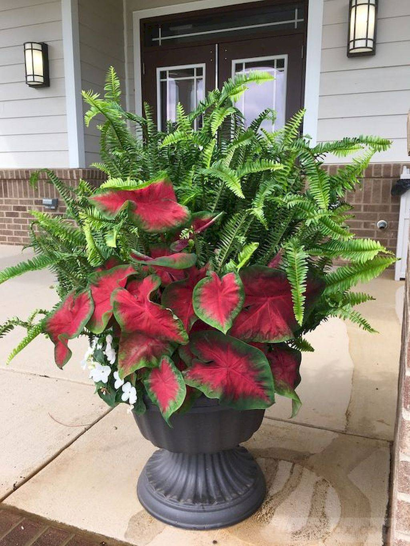 garden pot design-757097387338724345